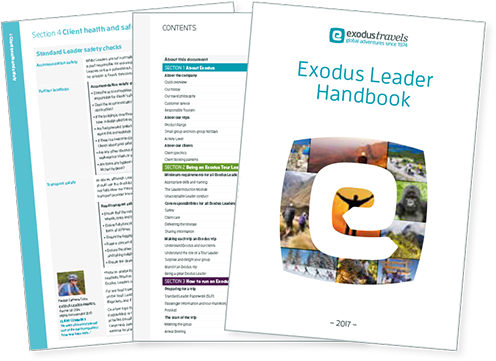 ExodusHandbook Logo