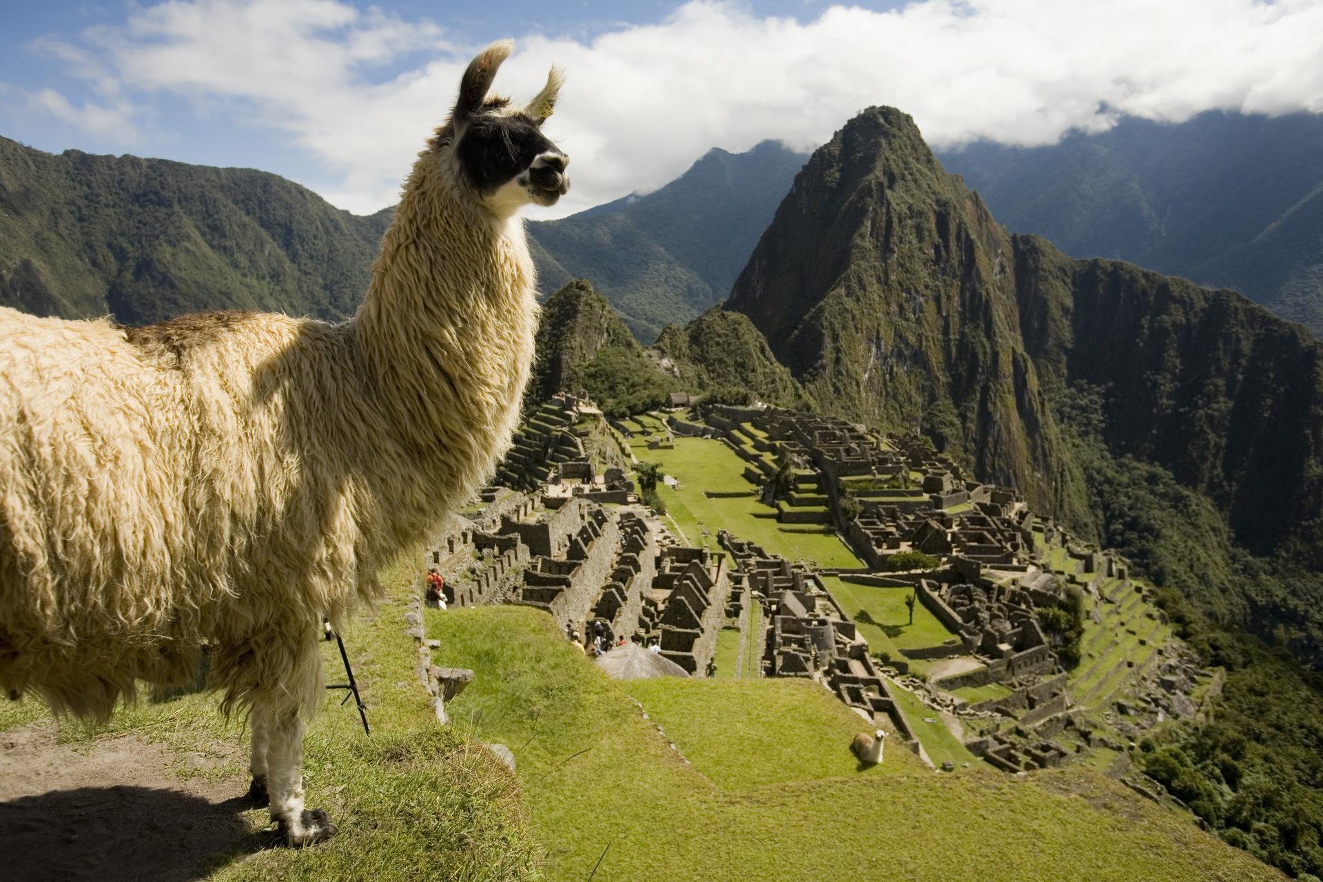 The impressive Machu Picchu